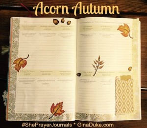 prayer journal, prayer closet